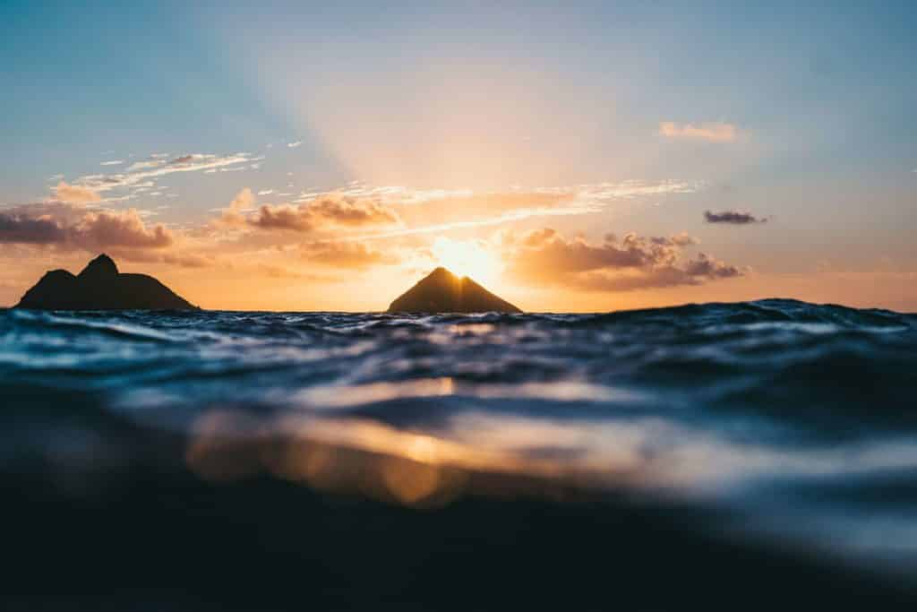 Somos tierra, agua, aire y luz, articulo de Karmelo Bizkarra